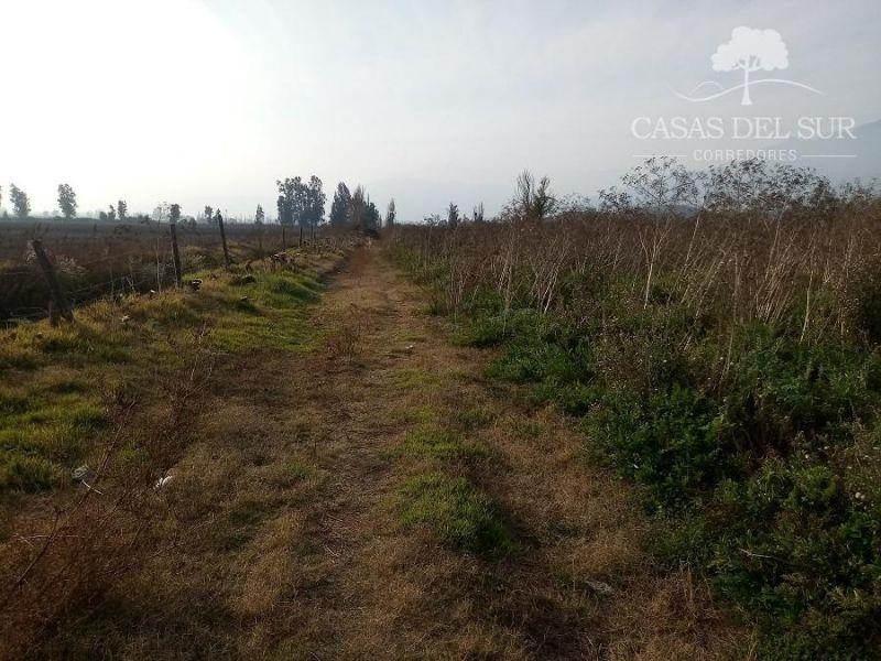 TERRENO EN VENTA... 11,2  hectáreas de terreno completamente Planas